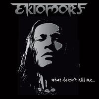 Ektomorf - What Doesn't Kill Me (2009) - [Limited Edition] - Hungría - Groove / Thrash Metal Calidad : Mp3, CBR 320 kbps (CD-Ri...