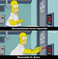 Sr. Burns Argentino