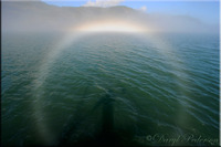 Un Espectro de Brocken desde Prince William Sound, Alaska. 19 de agosto de 2014 Crédito: Daryl Pederson